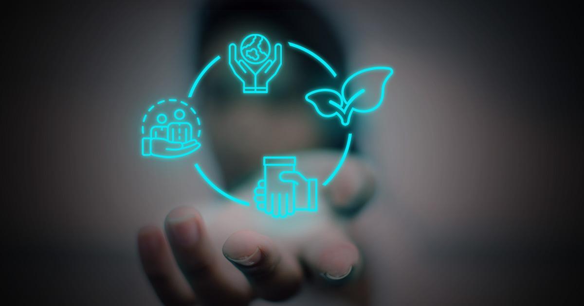 Las Cooperativas De Consumo Son El Futuro Y En Este Artículo Te Contamos Por Qué